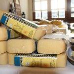 """Como si de un lingote de oro se tratara, el queso de barra de la Queseria Collera de Vidiago, en la muestra """" Tapas de Llanes """", brillaba por si solo. Sala Cultural Benavente. Teléfono 620 72 42 79. Alquiler para eventos"""