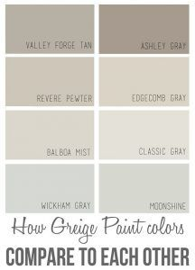 Neutral paint colors. List of best neutral paint colors for every room in a house. Comparing popular neutral paint colors. Benjamin Moore Valley Forge Tan. Benjamin Moore Ashley Gray. Benjamin Moore Revere Pewter. Benjamin Moore Edgecomb Gray. Benjamin Moore Balboa Mist. Benjamin Moore Classic Gray. Benjamin Moore Wickham Gray. Benjamin Moore Moonshine. Via Over the Big Moon