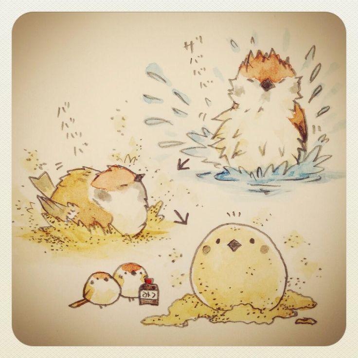 スズメは実はとても綺麗好きで水浴びや砂浴びが大好きな鳥です。でも水浴びの直後に砂浴びをしたらきな粉餅みたいになっちゃいそう…! pic.twitter.com/1008tiuoz3