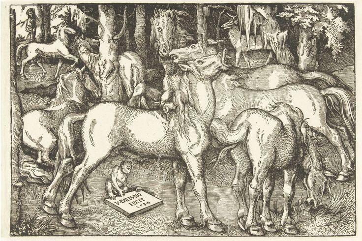 Hans Baldung Grien | Groep van zeven paarden en een aap, Hans Baldung Grien, 1534 | In een bos staat een groep paarden met op de voorgrond een briesende hengst en een grazend paard. De andere bewegen zich onrustig met wapperende manen en opengesperde neusgaten en ogen. Een aap houdt een schild met het signatuur en datering vast. Op de achtergrond staat een hert en links verschuilt een man zich achter een boom.