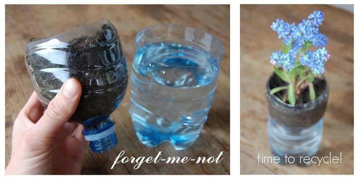 Pop bottle flower potPlants Can, Plastic Bottle, Ideas, Water Bottle, Recycle, Gardens, Flower Pots, Diy, Waterbottle