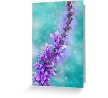 Turquoise Photography: Greeting Cards & Postcards | Redbubble