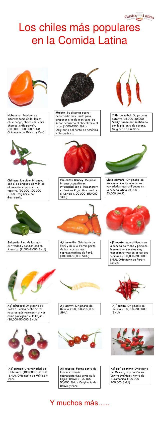 Los chiles más populares en la comida latina