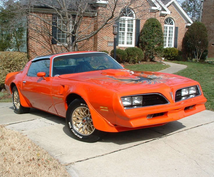 Totaled Cars For Sale >> 1978 Pontiac Trans-Am. I bought it for 4,000 dollars after my '77 Camaro got totaled. Drove it ...