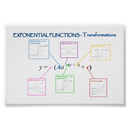 All Worksheets Transformations Of Exponential Functions – Transformations of Functions Worksheets