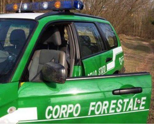 Torino abusivismo: accertate violazioni presso unazienda agricola