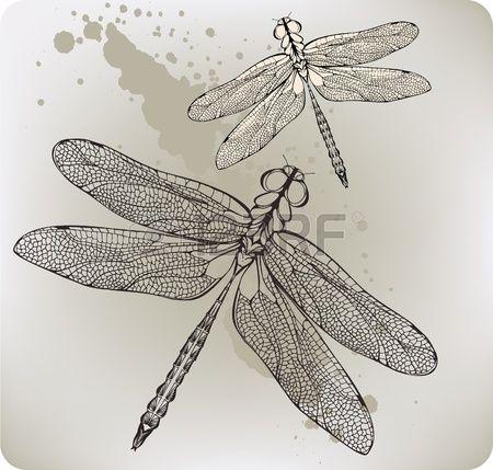 Volare libellula, disegno a mano. Illustrazione vettoriale.