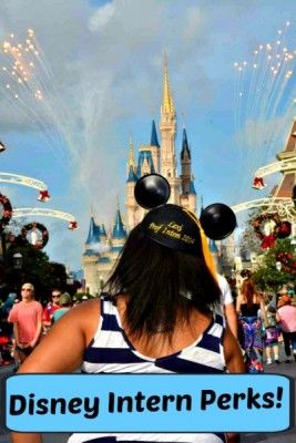 Find out the Perks of Being A Disney Intern