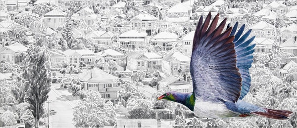 There is no Planet B - Kereru (over Devonport)