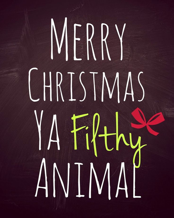 1000+ Funny Merry Christmas Quotes On Pinterest
