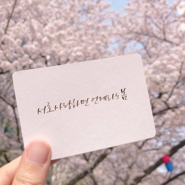 먼 데서도 날아오는 꽃향기처럼 봄바람 타고 어디든지 희망을 실어나르는 향기가 되자. . #이해인 '서로 사랑하면 언제라도 봄' 중 . #필림 #feellim #캘리그라피 #딥펜 . 꽃 반 사람 반