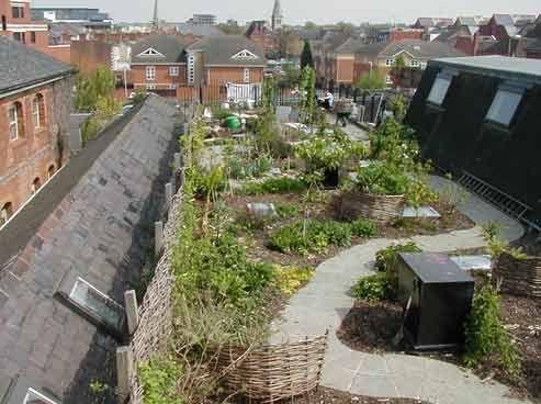 Daken Raised Bed Garden