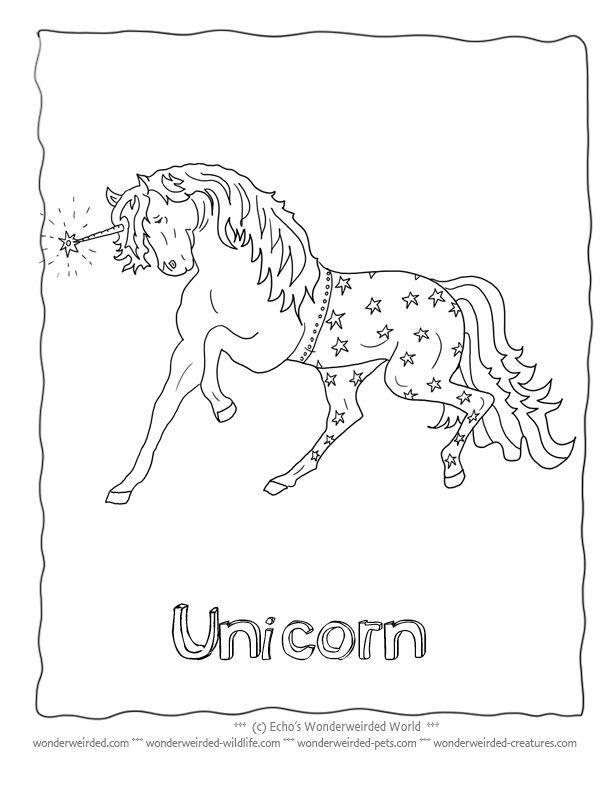122 best images about :3 Animal Coloring Pages on ...