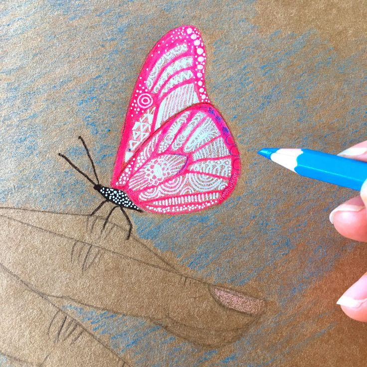 Butterfly on Kraft paper by Debi Hudson