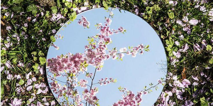 La belleza de los reflejos capturada en 8 imágenes perfectamente simétricas