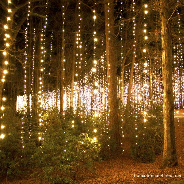 Fairy light strands dropped from trees - creates a magical woodland wedding setting! Via...The Handmade Home
