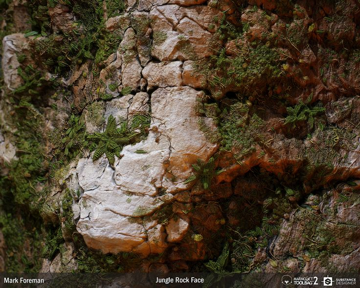 A substance for generating a rock face covered in plant growth.  Everything was made in substance designer, apart from the variation with the ARTStation logo, for which I created a height-map in Photoshop.