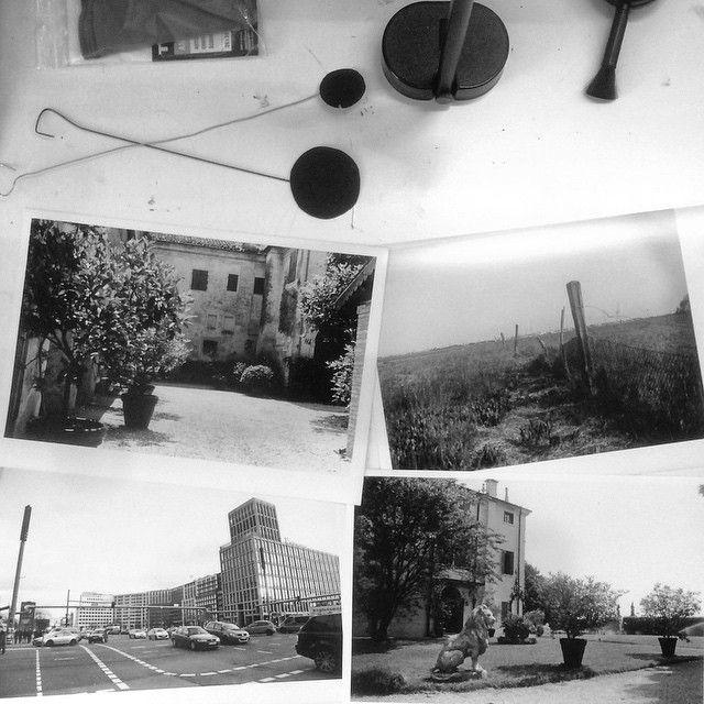 Si è concluso ieri il nostro corso base di #CameraOscura, queste sono alcune delle stampe prodotte dai nostri fantastici allievi! #FollowTheWhale #FilmIsAlive #analog #Padova #lab