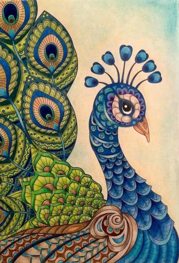 Beautiful Peacock Art Con Imagenes Dibujo Pavo Real Cuadro De Pavo Real Pavoreal Dibujo