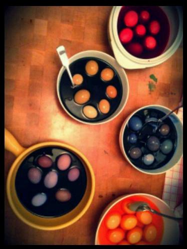 Dyeing Eggs!