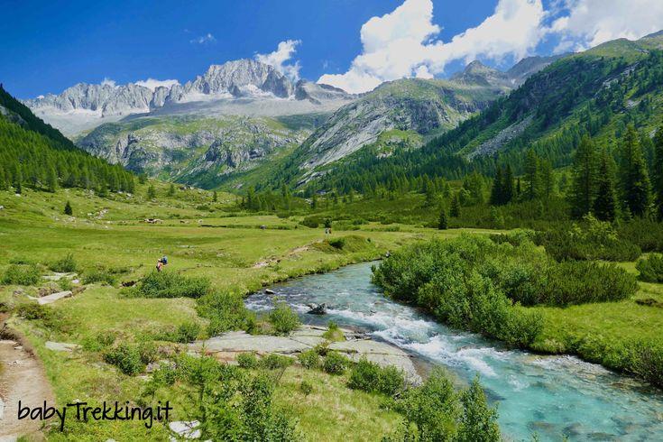 Una splendida passeggiata in Val di Fumo, laterale della Valle del Chiese: una perla incontaminata del Trentino e del Parco Naturale Adamello-Brenta