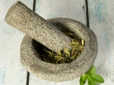 Stevia: dolcificante naturale fatto in casa