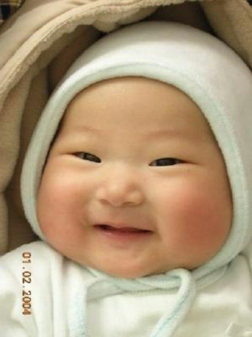Oh my goodness gracious....just look at those cheeks !!!  What a cutiepie!