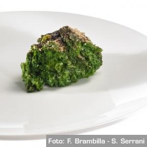 Zolla di Certosa: cavolo nero e funghi porcini - Chef Paolo Lopriore