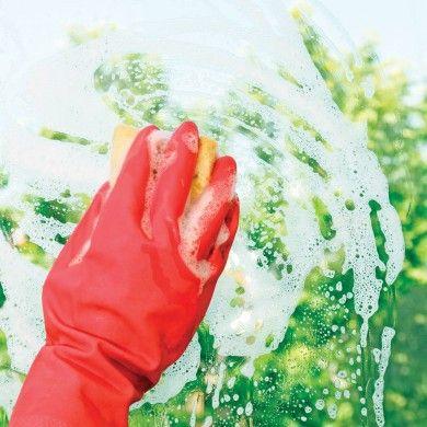 Trucs pour bien nettoyer les vitres - Trucs et conseils - Décoration et rénovation - Pratico Pratique