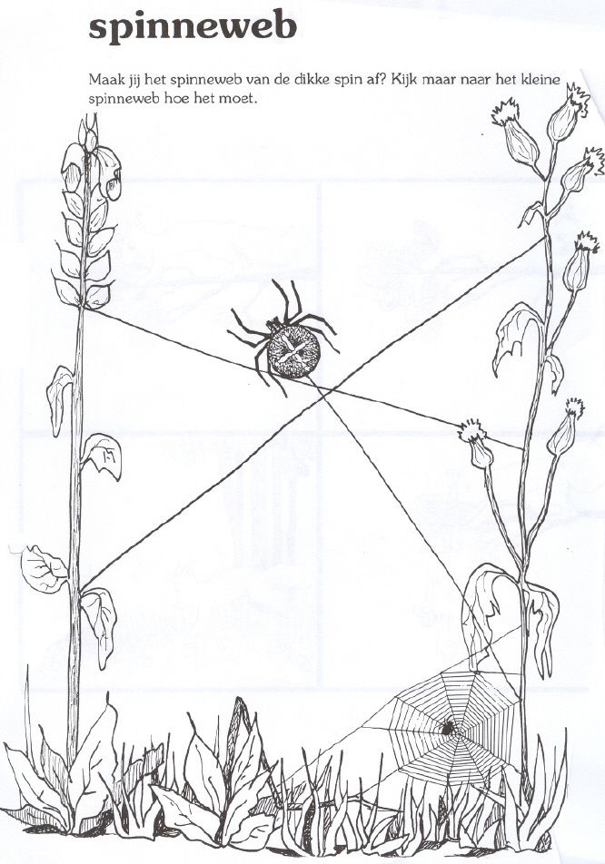 39 best taaltas de spin die het te druk had images on