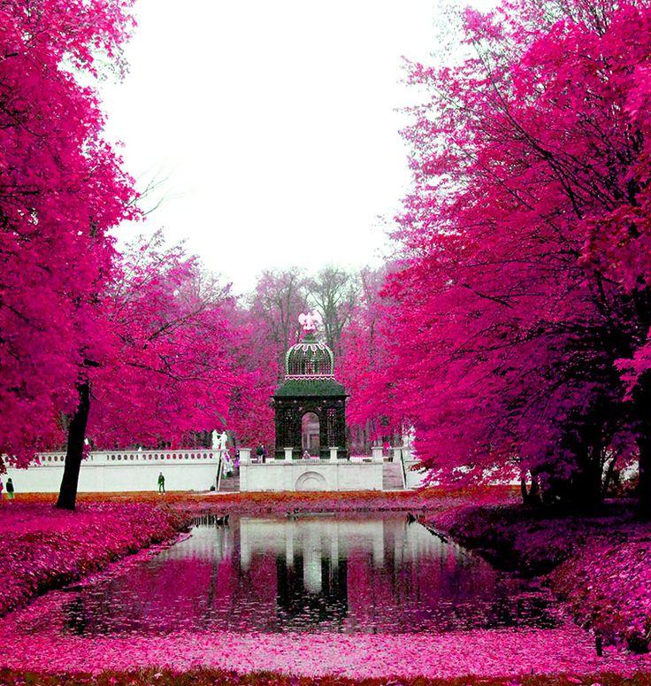 Białystok - park przy pałacu Branickich