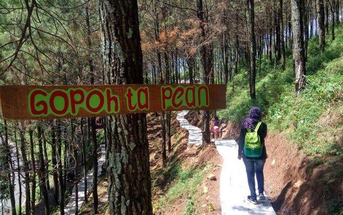 30 Pemandangan Pacet Di Malam Hari Merasakan Hutan Pinus Pacet Dimanjakan Kesejukan Tiga Gunung Download 44 Tempat Wisata Di Di 2020 Pemandangan Malam Kota Bogor
