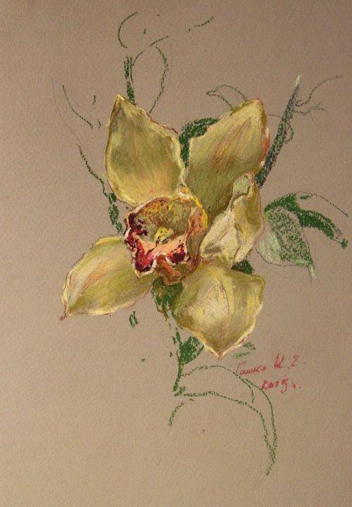 """""""Орхидея"""",28х18 см,бум.пастель,2015 г."""