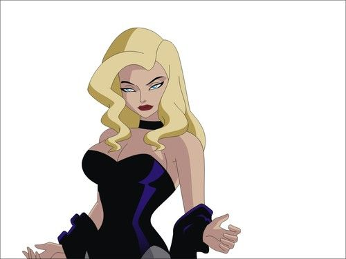 Black Canary from Justice League Unlimited The Animated Series | els3bas