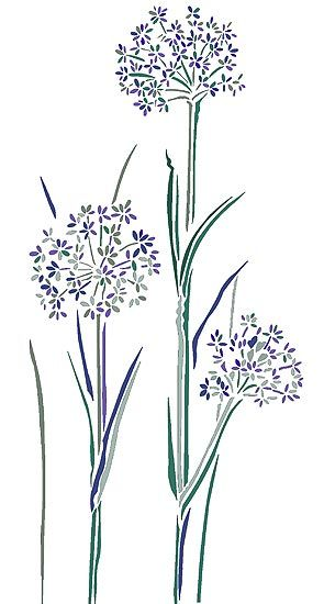 Cow parsley stencil £24