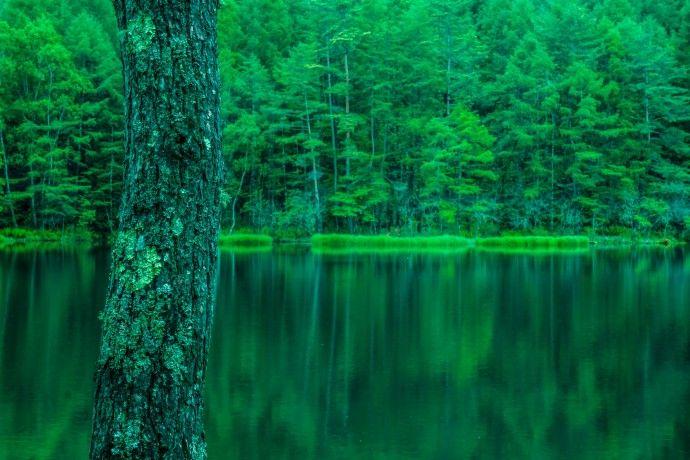 [:ja]御射鹿池〜日本画家 東山魁夷の「緑響く」のモチーフ[:en]Mishaka Pond: beautiful reflection[:]