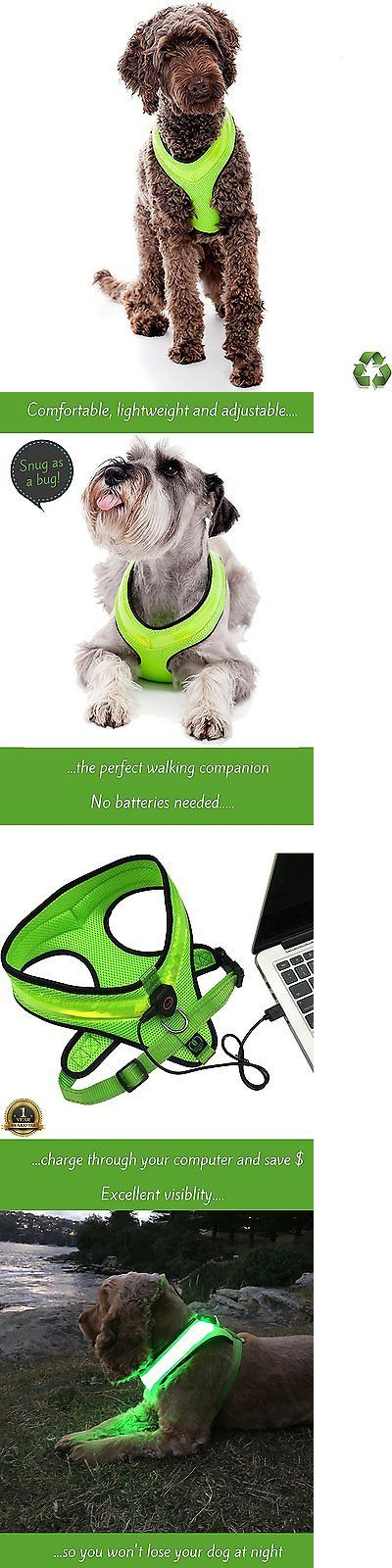 Animals Dog: Led Dog Safety Harness - Illuminated And Reflective Flashing Dogs Vest That Up - BUY IT NOW ONLY: $36.3