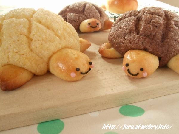Melon Pan Turtles! For melon pan recipe - http://happyhomebaking.blogspot.com/2007/08/japanese-melon-pan.html