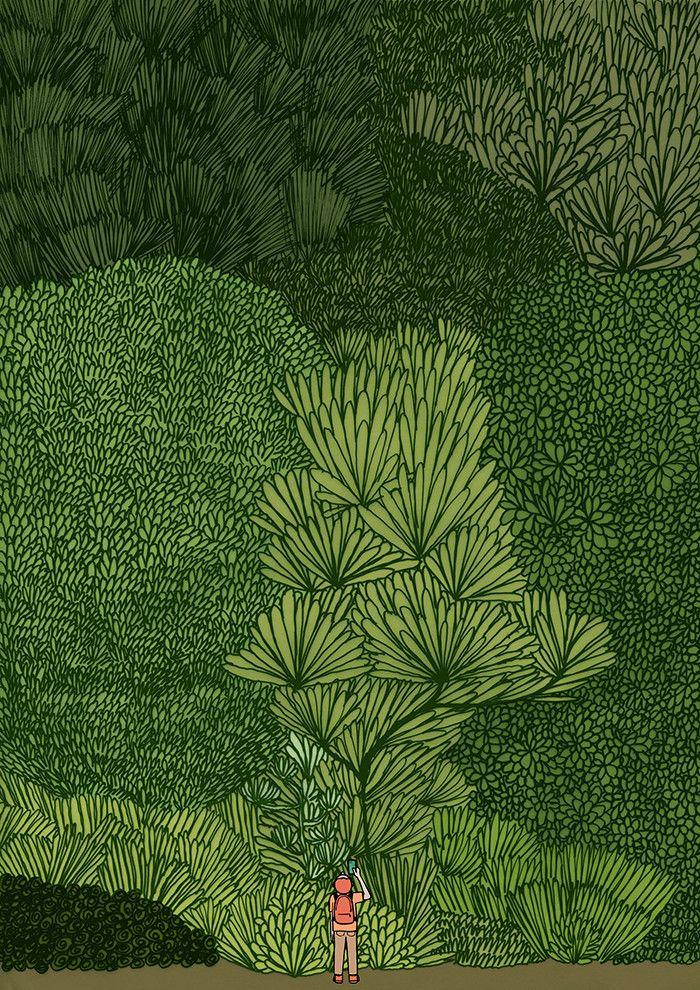Forest ~ Jean Jullien  #art #illustration