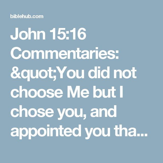 "John 15:16 Commentaries: ""You did not choose Me but I chose you, and appointed you that you would go and bear fruit, and that your fruit would remain, so that whatever you ask of the Father in My name He may give to you."