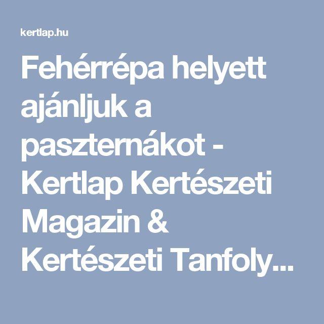 Fehérrépa helyett ajánljuk a paszternákot - Kertlap Kertészeti Magazin & Kertészeti Tanfolyamok