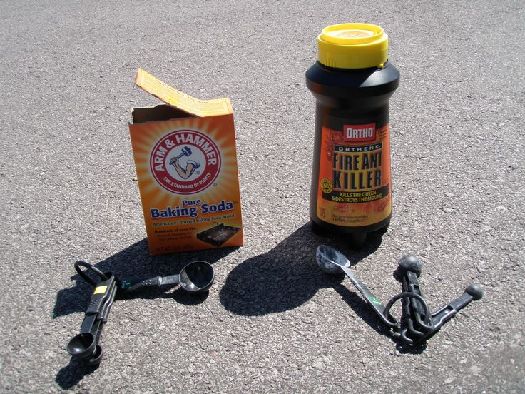17 best ideas about fire ant killers on pinterest fire ants homemade ant killer and fire ant. Black Bedroom Furniture Sets. Home Design Ideas