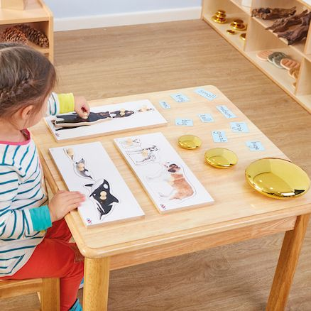 A set of 3 jigsaw puzzles with pegged pieces, ideal for discussions about similarities and differences. #puzzle #pegboard #wooden #jigsaw #bear #whale #dogs #children #play #education #british #england #derby #madeinengland #madeinbritain