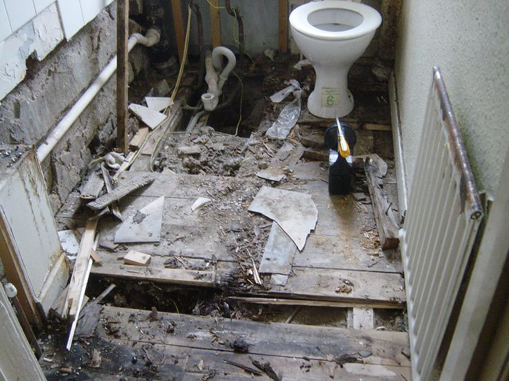 Dry rot - a bad case: http://www.wisepropertycare.com/dry-rot #dryrot #damp #leaks #propertycare #propertyproblems #property #realestate #home #DIY #homeimprovement #rot #wetrot #dampproofing