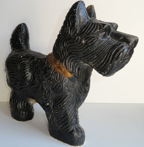 pin coolest scottie - photo #4