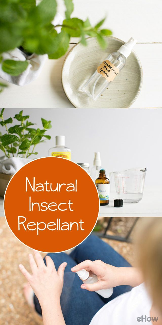 Peppermint essential oil is a natural deterrent against mosquitoes and flying insects. Use peppermint oil alone or in a homemade insect spray to effectively repel mosquitoes, gnats and horseflies. http://www.ehow.com/how_2164042_use-peppermint-oil-as-insect.html?utm_source=pinterest.com&utm_medium=referral&utm_content=freestyle&utm_campaign=fanpage