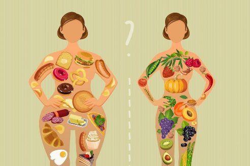 Что такое метаболизм и чем он важен для здоровья человека. Виды обмена веществ, чем опасно нарушения. Как зависит обмен веществ и вес человека.