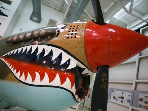 """WW2 Era P-40 Tiger Shark Fighter Plane, Palm Springs Air Museum, Palm Springs, California, USA""=>"