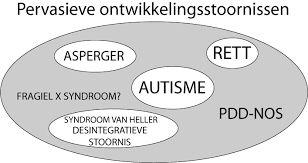 Afbeeldingsresultaat voor autisme schema