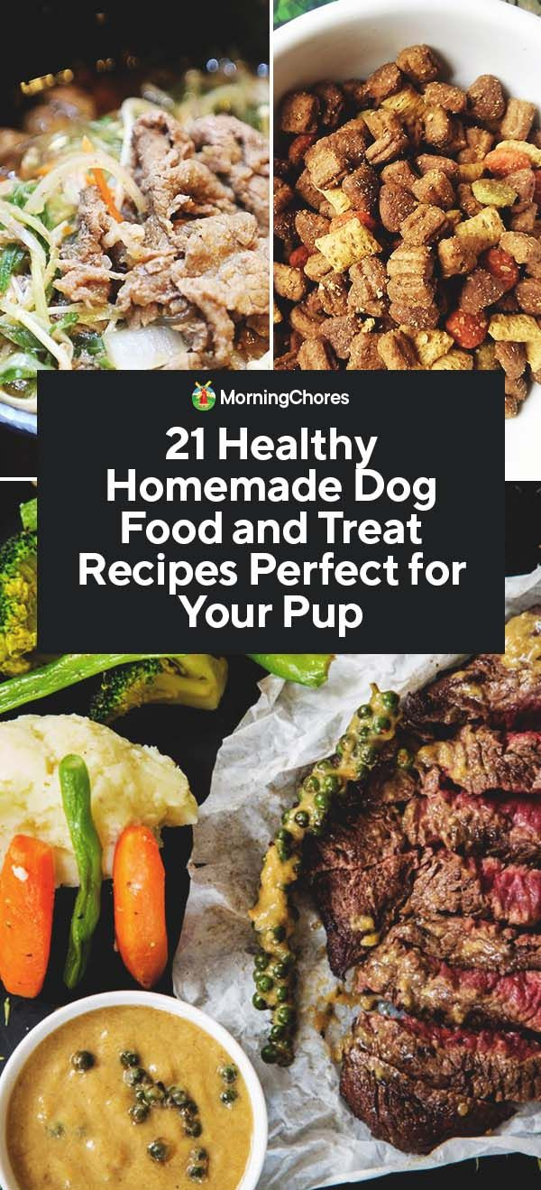 21 Healthy Homemade Dog Food And Treat Recipes Perfect For Your